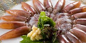 toyamabay_gourmet_img4